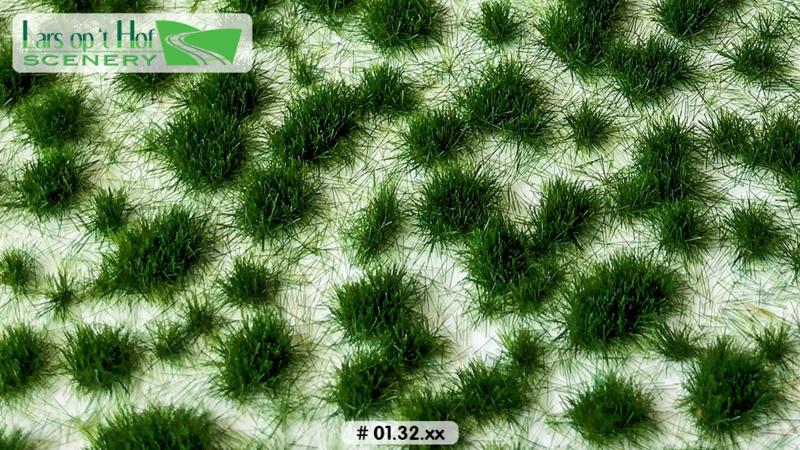 Graspollen vroege zomer - kort