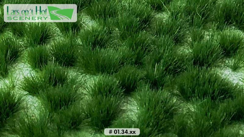 Graspollen vroege zomer - lang