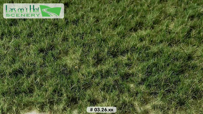 Graspollen weiland zomer - lang