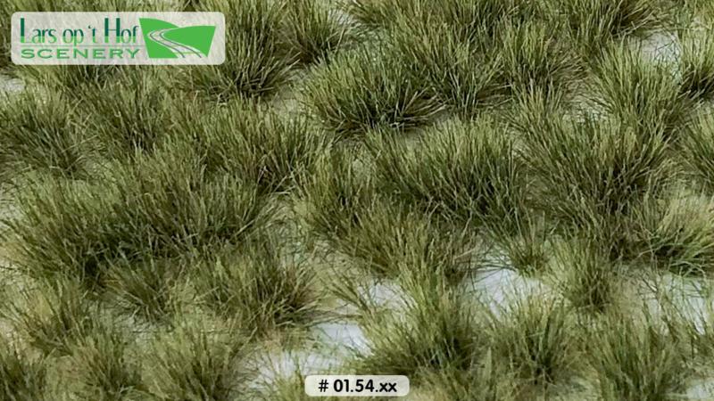 Graspollen vroege herfst - lang