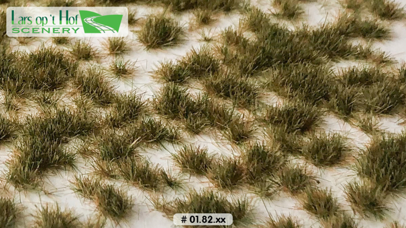 Grass tufts early winter - short