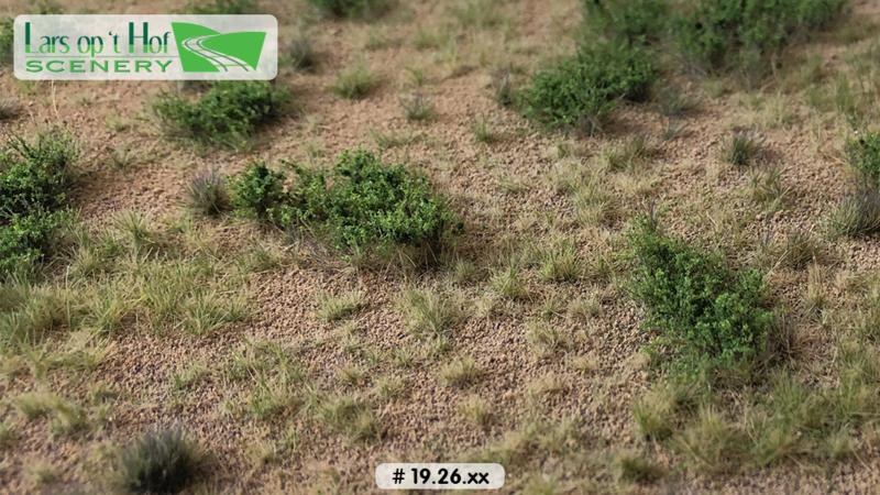 Woestijn met struiken - type 1