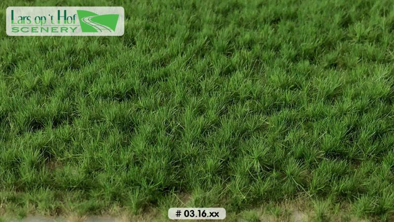 Graspollen weiland lente - lang