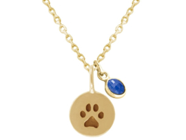 Blauwe Saffier Zilverenketting met honden / Kattenpoot