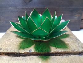 Lotusbloem Groen -  hart chakra