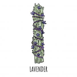 Stick: Witte salie met Lavendel