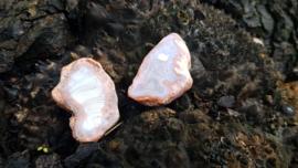 Agaat Geode schijfjes nieuw *** !