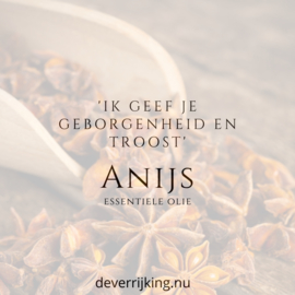 Anijs 10ml