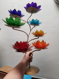7 Lotusbloemen plus standaard