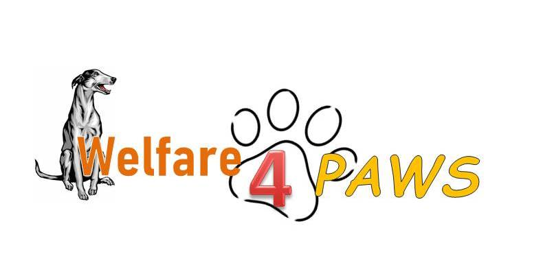 Welfare4Paws