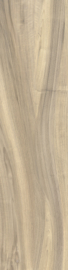 Castelvetro More - Miele