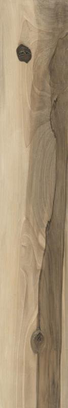 Sintesi Deck - Miele 20x120 cm