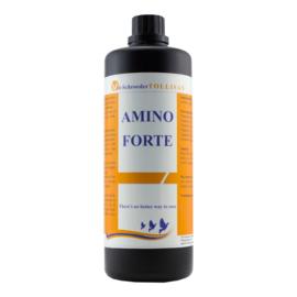 Amino Forte 500 ml