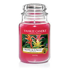 Yankee Candle Large Jar Tropical Jungle