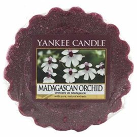 Yankee Candle Tart Madagascan Orchid
