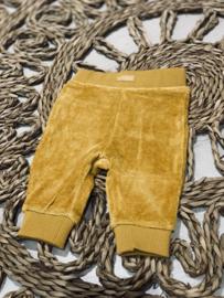 Bampidano newborn | okergeel velvetbroekje