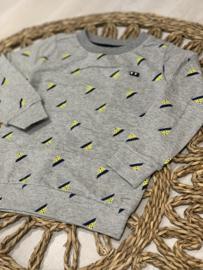 Sevenoneseven | grijze sweater met print