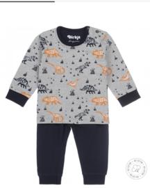 Dirkje | 2deligr pyjama met dino's