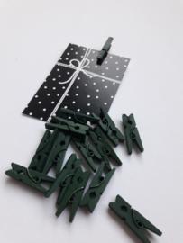 Knijper | groen | 2,5 cm | 10 stuks