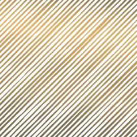 Tissuepapier | gouden streep | 5 stuks