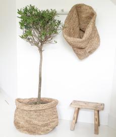 basket palmblad