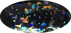 SPTC multicolor