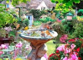 House of Puzzles - Summer Birds - 500 stukjes