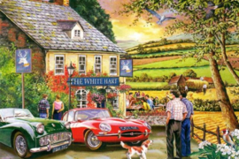 House of Puzzles - Pleasant Evening - 1000 stukjes
