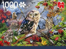 Jumbo Premium - Owls in the Moonlight - 1000 stukjes