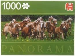 Jumbo Premium - Haflinger Paarden - 1000 stukjes
