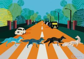 Gibsons 3605 - Abbey Road Foxes - 500 stukjes
