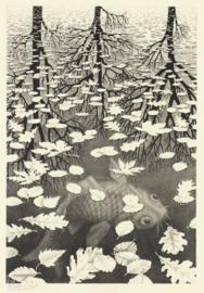 Puzzelman M.C. Escher - Drie Werelden - 1000 stukjes