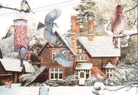 House of Puzzles - a Bird's Eye View - 1000 stukjes