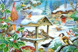 House of Puzzles - Feed the Birds - 250XL stukjes