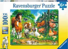 Ravensburger - Dierenbijeenkomst - 100XXL stukjes