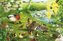 House of Puzzles - Ducks to Water - 500XL stukjes