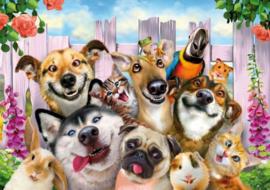 Wentworth - Pets Selfie - 40 stukjes