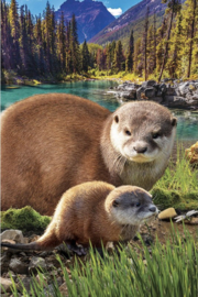 Eurographics 5558 - Otters - 250 stukjes