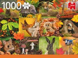 Jumbo - Autumn Animals - 1000 stukjes