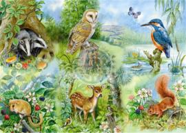 House of Puzzles - Nature Study - 250XL stukjes