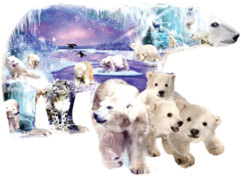 SunsOut 96022  Polar World  Vormpuzzel 1000 stukjes