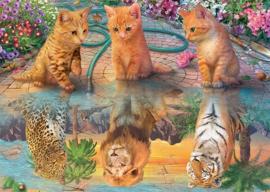 Jumbo - Kitten's Dream - 500 stukjes