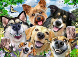 Ravensburger - Vrolijke Honden - 500 stukjes