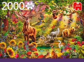 Jumbo - Magic Forest at Sunset - 2000 stukjes