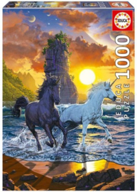 Educa - Eenhoorn op het Strand - 1000 stukjes