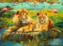 Ravensburger - Leeuwen in de Savanne - 500 stukjes