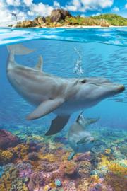 Eurographics 5560 - Dolphins - 250 stukjes