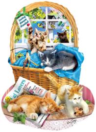 SunsOut 97058 - Free Kitties - 1000 stukjes  Vormpuzzel