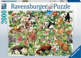 Ravensburger - Jungle - 2000 stukjes