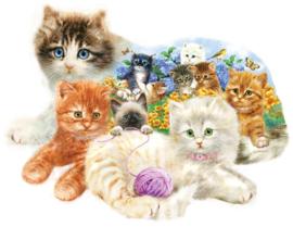 SunsOut 95958 - A Litter of Kittens - 1000 stukjes  Vormpuzzel